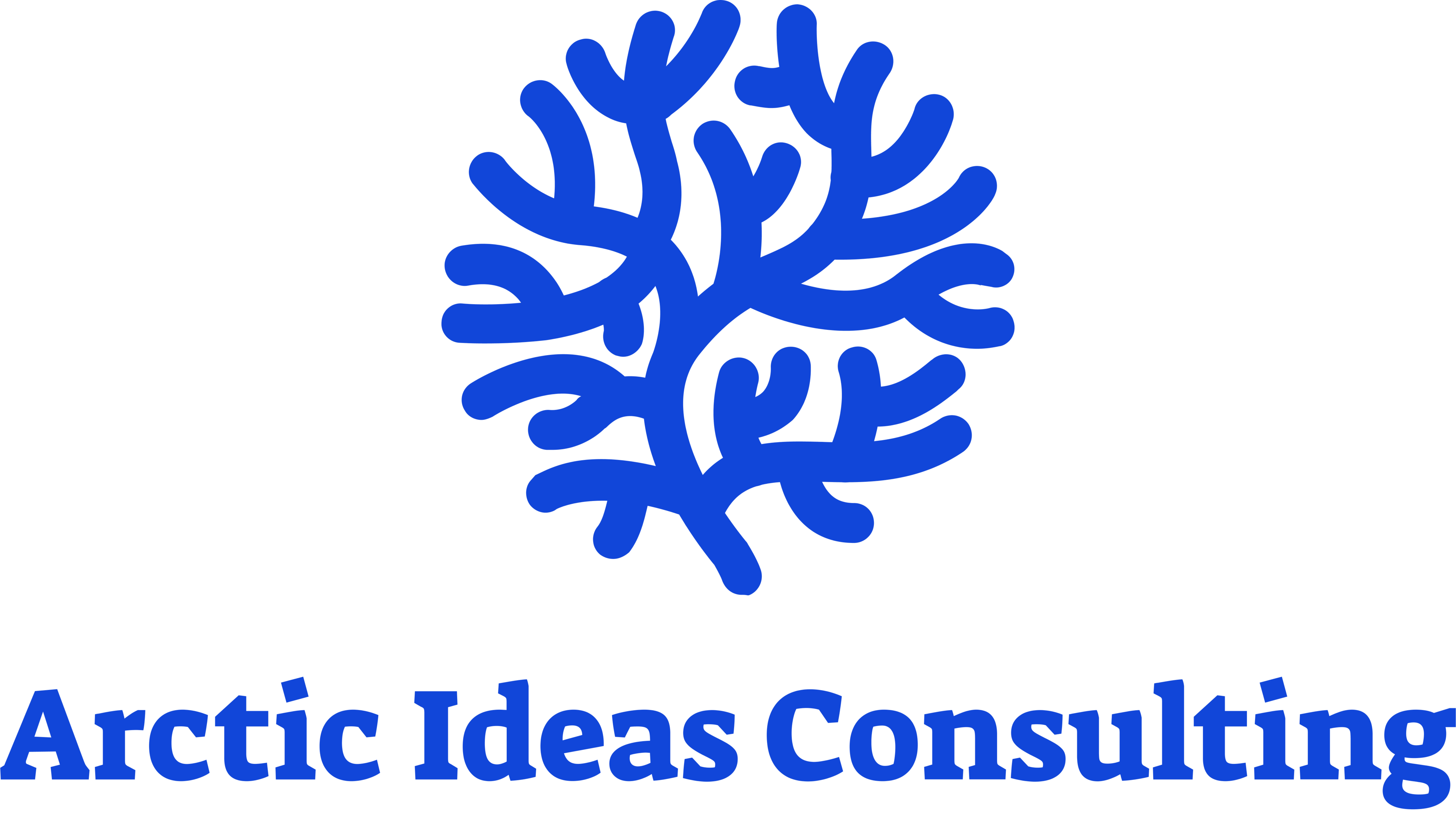 Arctic Ideas Consulting